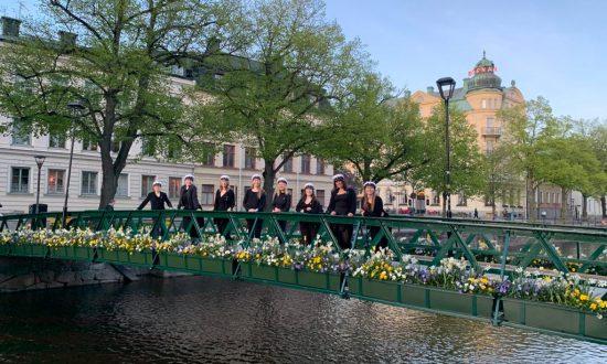 Serenad Uppsala Damkör